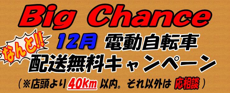 12月 電動自転車 配送無料キャンペーン