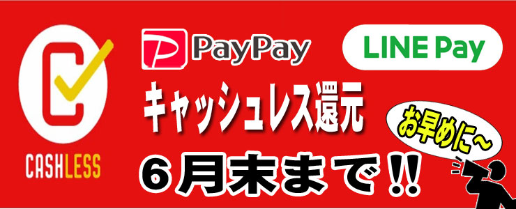 PAY PAY&LINE PAY 導入