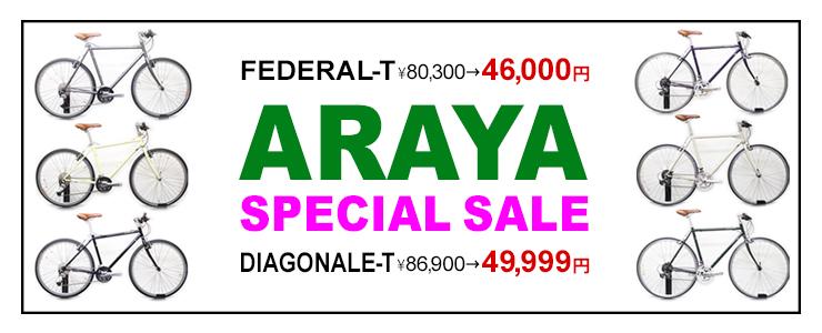 ARAYA 海外モデル